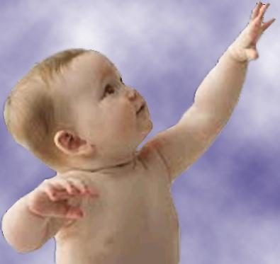 born_belivers_image