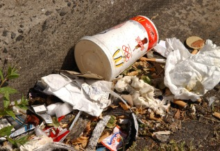 litter_at_side_of_road_lowres_3662